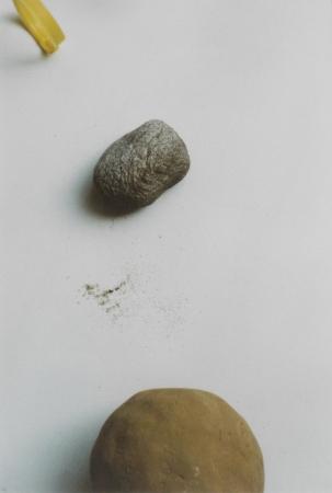 RIMG2820