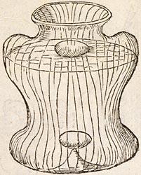 Devises heroiques, Claude Paradin, 1551